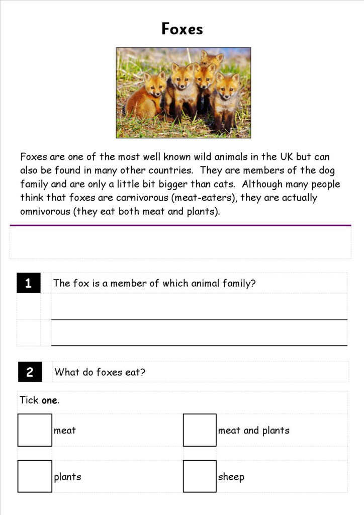 Mental Math Grade 3 Addition Worksheet | Printable With Multiplication Worksheets Entry Level 3