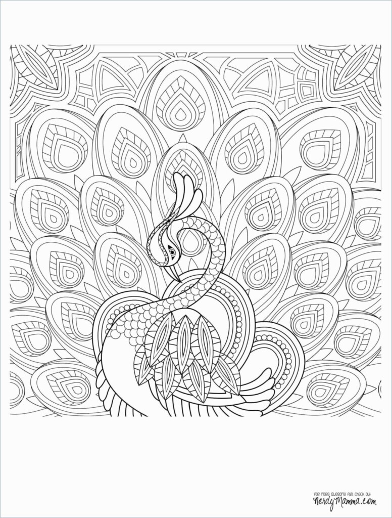 Coloring Pages : Kids Worksheets This Summer Math Packet Throughout Printable Multiplication Packet