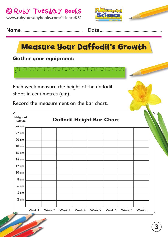 Ks1 Science: Plants - Grow A Daffodil Bulb inside Multiplication Worksheets Ks1 Tes