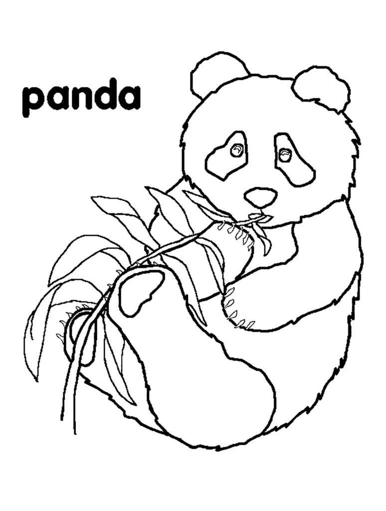 Worksheets : Pandas For Children Kids Coloring Printable