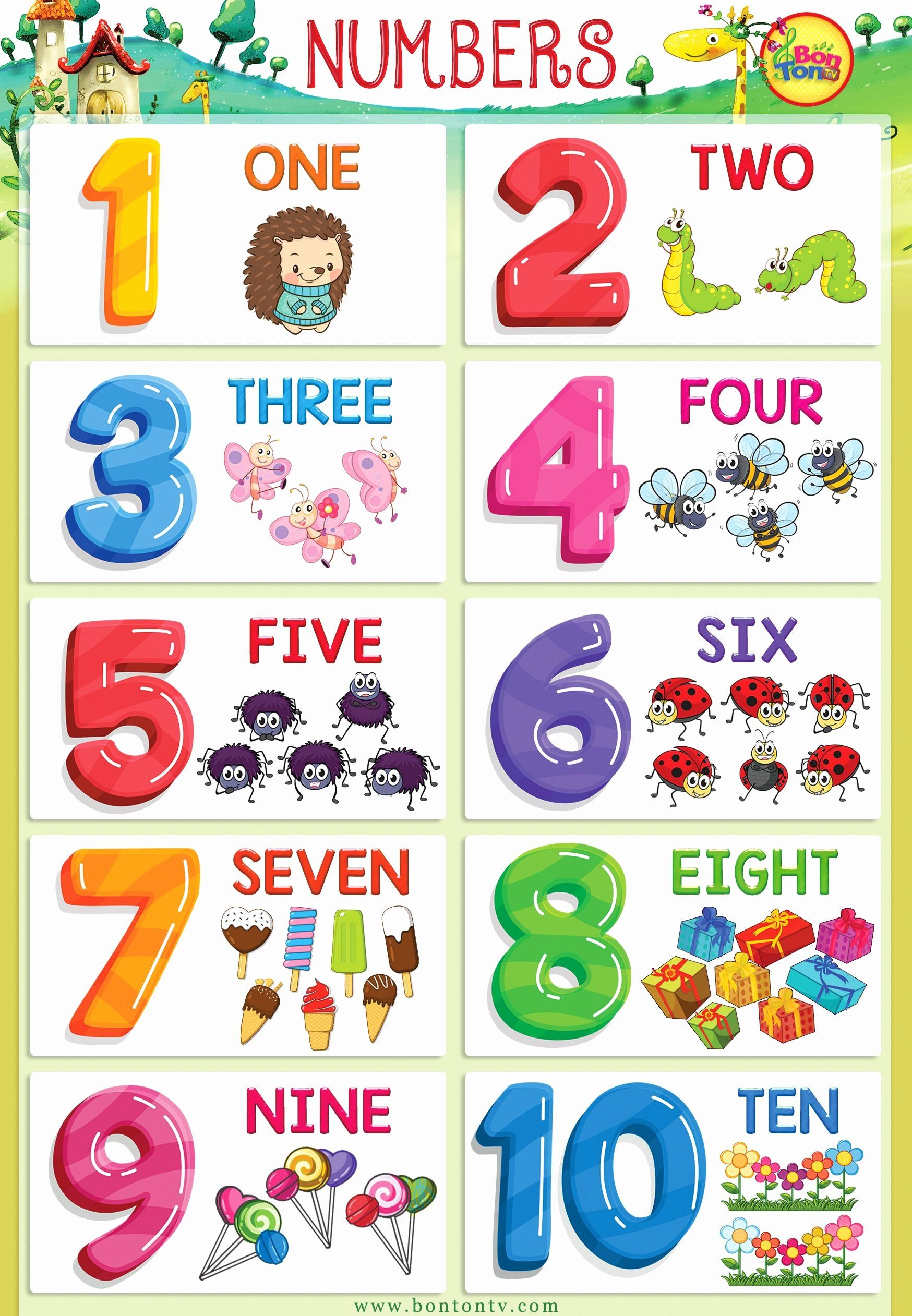 Multiplication Flash Cards Printable Printable Numbers 1-20